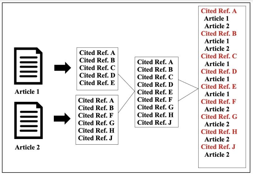 citation system design
